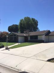 5511 Malvern Way, Riverside, CA 92506 (#IV17052750) :: RE/MAX Estate Properties