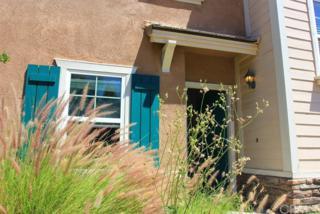 3806 Carrotwood Street, Riverside, CA 92501 (#BB17093040) :: RE/MAX Estate Properties
