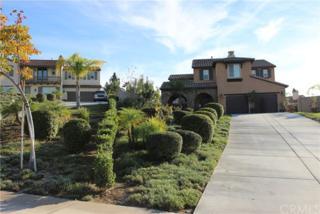 596 Hacienda Drive, Riverside, CA 92507 (#SW17092936) :: RE/MAX Estate Properties