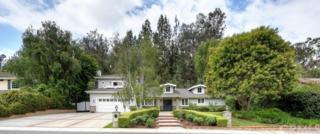 27171 Lost Colt Drive, Laguna Hills, CA 92653 (#OC17103804) :: Fred Sed Realty