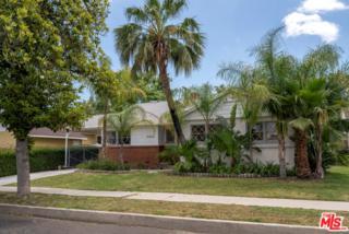 19408 Calvert Street, Tarzana, CA 91335 (#17231728) :: Fred Sed Realty