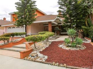 24516 Creekview Drive, Laguna Hills, CA 92653 (#OC17109202) :: Fred Sed Realty