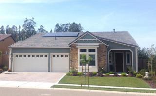 1678 Louise Lane, Nipomo, CA 93444 (#SB17107880) :: Pismo Beach Homes Team