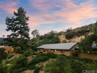 24525 Dry Canyon Cold Creek Road, Calabasas, CA 91302 (#SR17106865) :: Fred Sed Realty
