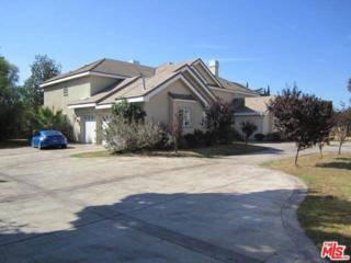 17632 Parthenia Street, Northridge, CA 91325 (#17233014) :: Fred Sed Realty