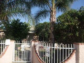 14642 Polk Street, Sylmar, CA 91342 (#SR17112222) :: Fred Sed Realty