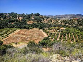 1313 Rice Canyon Road, Fallbrook, CA 92028 (#SW17112229) :: Dan Marconi's Real Estate Group