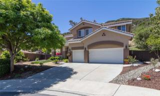 23487 Mountainside Court, Murrieta, CA 92562 (#SW17112605) :: California Realty Experts