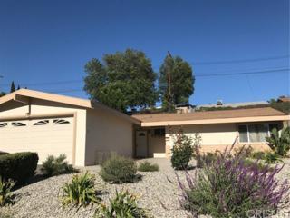 9600 Mclennan Avenue, Northridge, CA 91343 (#SR17113058) :: Fred Sed Realty