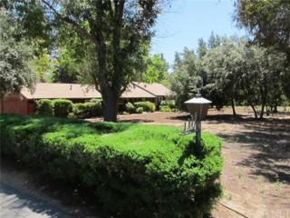 9750 Amestoy Avenue, Northridge, CA 91325 (#SR17112978) :: Fred Sed Realty
