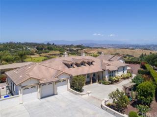 5136 Minneola Drive, Fallbrook, CA 92028 (#SW17111401) :: Dan Marconi's Real Estate Group