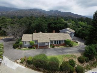 2054 Lyans Drive, La Canada Flintridge, CA 91011 (#317004591) :: Fred Sed Realty