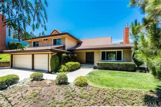 4035 E Country Canyon Road, Anaheim Hills, CA 92807 (#PW17114971) :: The Darryl and JJ Jones Team