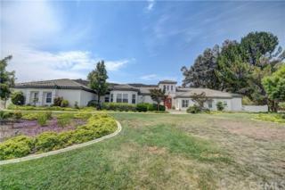 22385 Alameda Del Monte, Wildomar, CA 92595 (#RS17115002) :: Dan Marconi's Real Estate Group