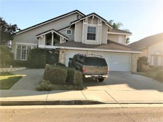 22983 Wing Elm Circle, Wildomar, CA 92595 (#SW17116148) :: California Realty Experts