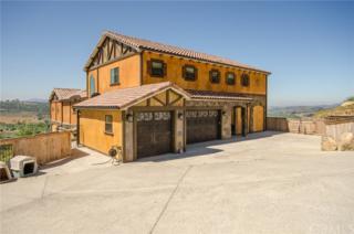 3507 Monserate Hill Road, Fallbrook, CA 92028 (#SW17116270) :: Dan Marconi's Real Estate Group