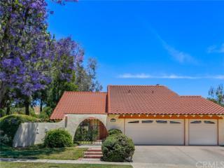 3051 Stonewood Street, Simi Valley, CA 93063 (#BB17115370) :: Pismo Beach Homes Team