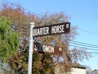 4713 Quarter Horse Trail, Orcutt, CA 93455 (#NS17111766) :: Pismo Beach Homes Team
