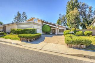 5351 E. Willowick Drive, Anaheim Hills, CA 92807 (#PW17116151) :: The Darryl and JJ Jones Team