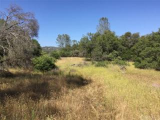 0-13.15 AC Meadow Ridge Road, Coarsegold, CA 93614 (#YG17116878) :: RE/MAX Cornerstone