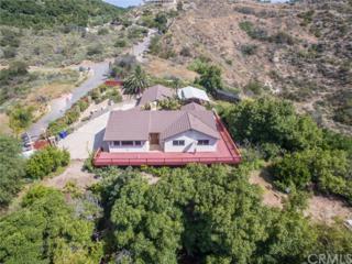 4072 Star Track Way, Fallbrook, CA 92028 (#SW17117209) :: Dan Marconi's Real Estate Group