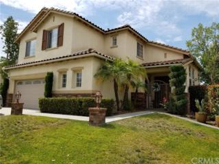 24147 Brillante Drive, Wildomar, CA 92595 (#SW17114912) :: Dan Marconi's Real Estate Group
