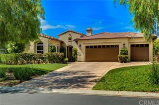 1645 Loch Ness Drive, Fallbrook, CA 92028 (#OC17117645) :: Dan Marconi's Real Estate Group