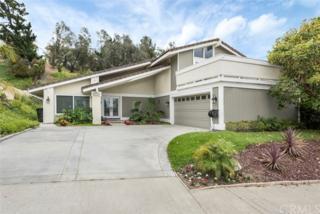 5450 E Willowick Circle, Anaheim Hills, CA 92807 (#PW17117656) :: The Darryl and JJ Jones Team