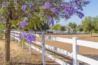 25810 Rolling Hills Drive, Menifee, CA 92584 (#SW17116804) :: California Realty Experts