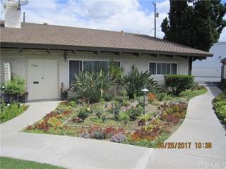 5046 Lakeview Avenue #24, Yorba Linda, CA 92886 (#PW17118106) :: The Darryl and JJ Jones Team