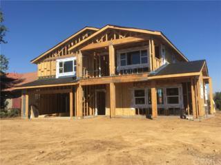 20310 Newton Street, Corona, CA 92881 (#IV17118270) :: California Realty Experts