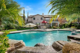 45358 Saint Tisbury Street, Temecula, CA 92592 (#SW17118257) :: California Realty Experts