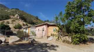 18169 Sanders Drive, Lake Elsinore, CA 92530 (#TR17118452) :: Dan Marconi's Real Estate Group