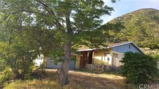 18175 Sanders Drive, Lake Elsinore, CA 92530 (#TR17118462) :: Dan Marconi's Real Estate Group