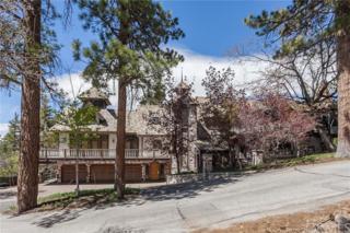 848 Jeffries Road, Big Bear, CA 92315 (#PW17118587) :: The Darryl and JJ Jones Team