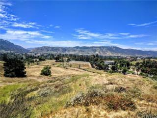 43800 Paulita Road, Temecula, CA 92592 (#SW17118307) :: California Realty Experts