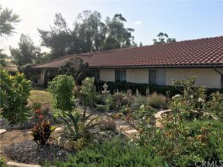 15710 Pounders Drive, Riverside, CA 92504 (#SW17118648) :: Dan Marconi's Real Estate Group
