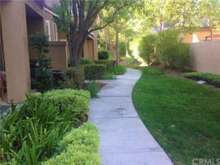 1137 S Positano Avenue, Anaheim Hills, CA 92808 (#PW17067708) :: Dan Marconi's Real Estate Group
