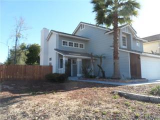 23778 Cork Oak Circle, Murrieta, CA 92562 (#SW17052148) :: Allison James Estates and Homes