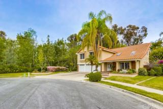21312 Avenida Manantial, Lake Forest, CA 92630 (#OC17059178) :: Fred Sed Realty