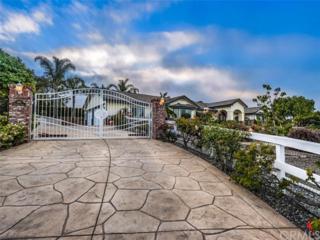 398 Futurity Lane, Fallbrook, CA 92028 (#SW17111855) :: Dan Marconi's Real Estate Group