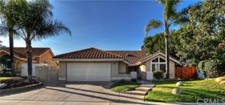 2831 Riachuelo, San Clemente, CA 92673 (#OC17048294) :: Fred Sed Realty
