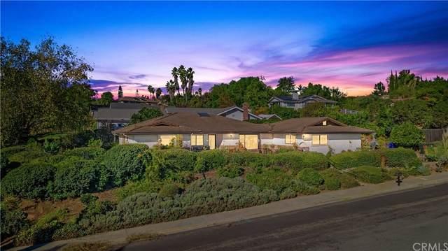1597 S S. Hill Avenue, Fallbrook, CA 92028 (#SW21025618) :: The Laffins Real Estate Team