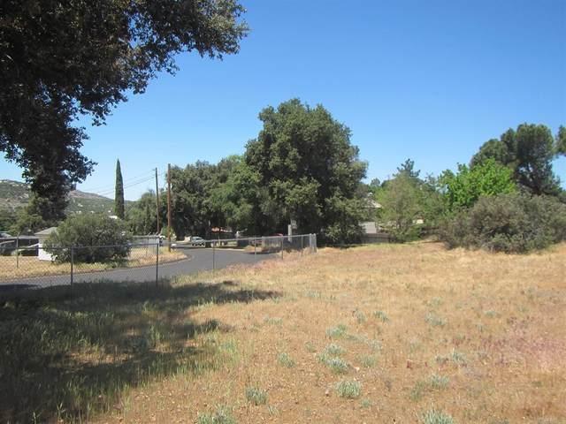 3 Lots Widgeon Road, Campo, CA 91906 (#PTP2103377) :: Jett Real Estate Group