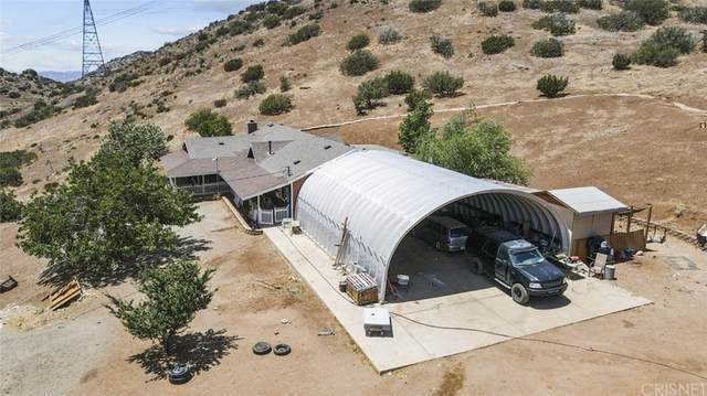 35401 Sky Vista Road, Acton, CA 93510 (#SR21115771) :: Steele Canyon Realty