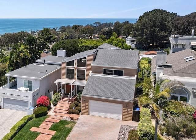 2042 De Mayo Road, Del Mar, CA 92014 (#NDP2107174) :: Jett Real Estate Group