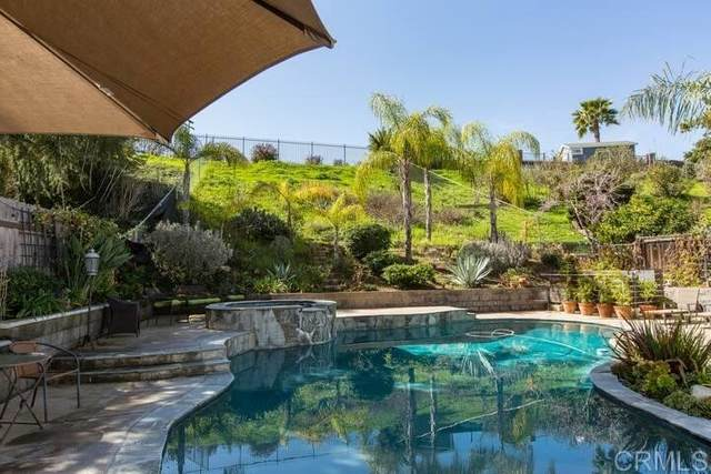 5955 Rio Valle Drive, Bonsall, CA 92003 (#NDP2107983) :: Mark Nazzal Real Estate Group