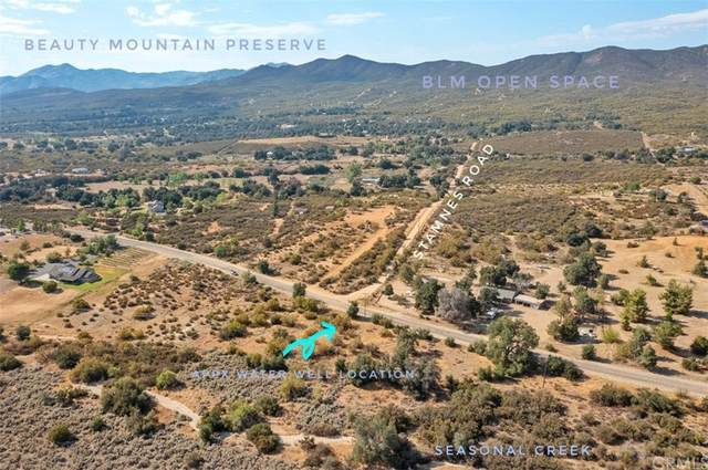0 Chihuahua Valley Road, Warner Springs, CA 92086 (#ND21153154) :: Robyn Icenhower & Associates