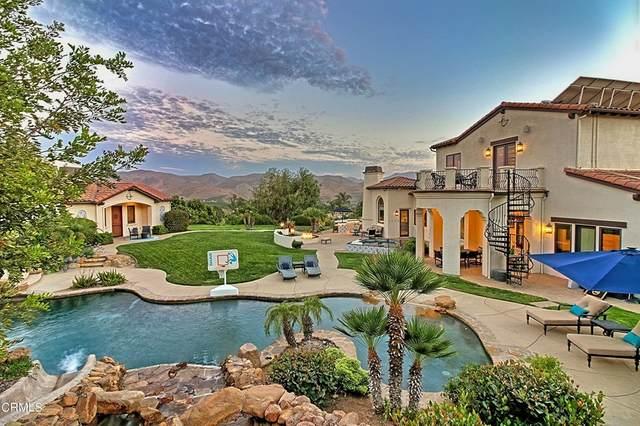 6983 Calle Dia, Camarillo, CA 93012 (#V1-7085) :: Steele Canyon Realty