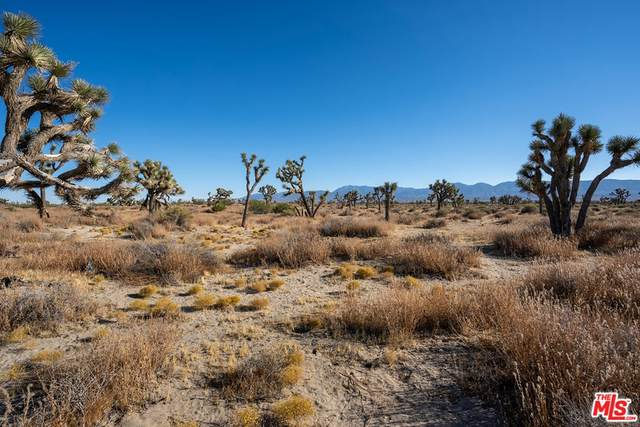 0 125Th Ste Nog /Vic A, Sun Village, CA 93543 (MLS #21760648) :: Desert Area Homes For Sale